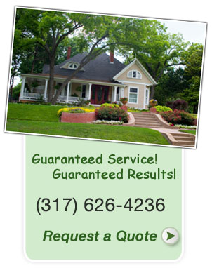 Noblesville, Fishers and Carmel lawn services- grass cutting